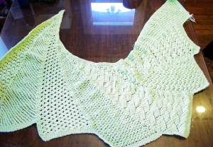 Eloise Lace Wingspan in Encore